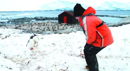 Portugal leva quatro cientistas portugueses e 101 estrangeiros para a Antártida