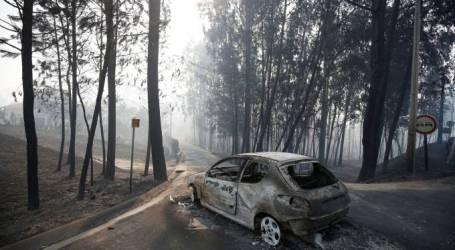 Basta!  Portugal não quer voltar a arder