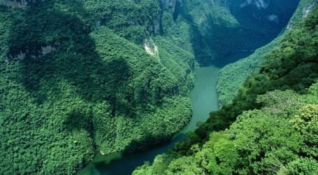 Canadiano acusado de matar curandeira linchado na Amazónia