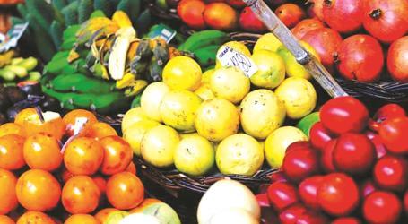 Fruta, vinhos, folclore e bordados prometem marcar 31.ª Semana Cultural Madeirense