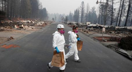 Novo balanço do fogo na Califórnia confirma 76 mortos