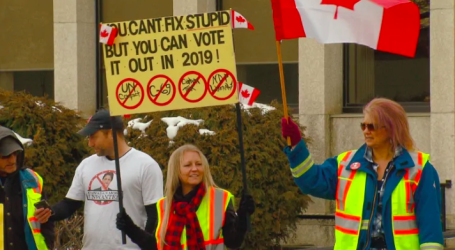 Yellow vest protests in Red Deer creating stress for new arrivals to Canada