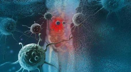 Açores publicam 20 anos de registo oncológico