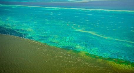Maré suja atinge Grande Barreira de Coral na Austrália