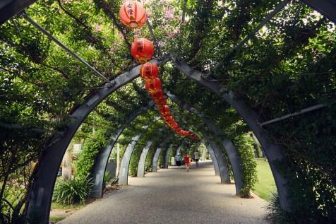 Brisbane, Buddha, Festival, garden, Garten, South Bank, Australien, Australia, roadtrip, city, citytour, citywalk, Spaziergang, walks