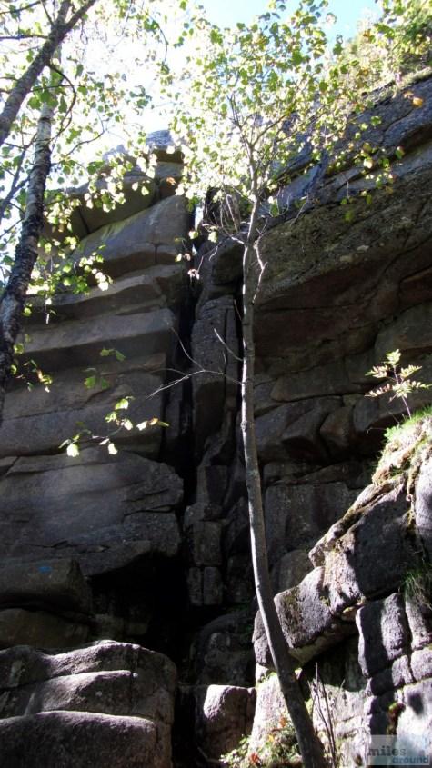 Gorham Mountain Trail