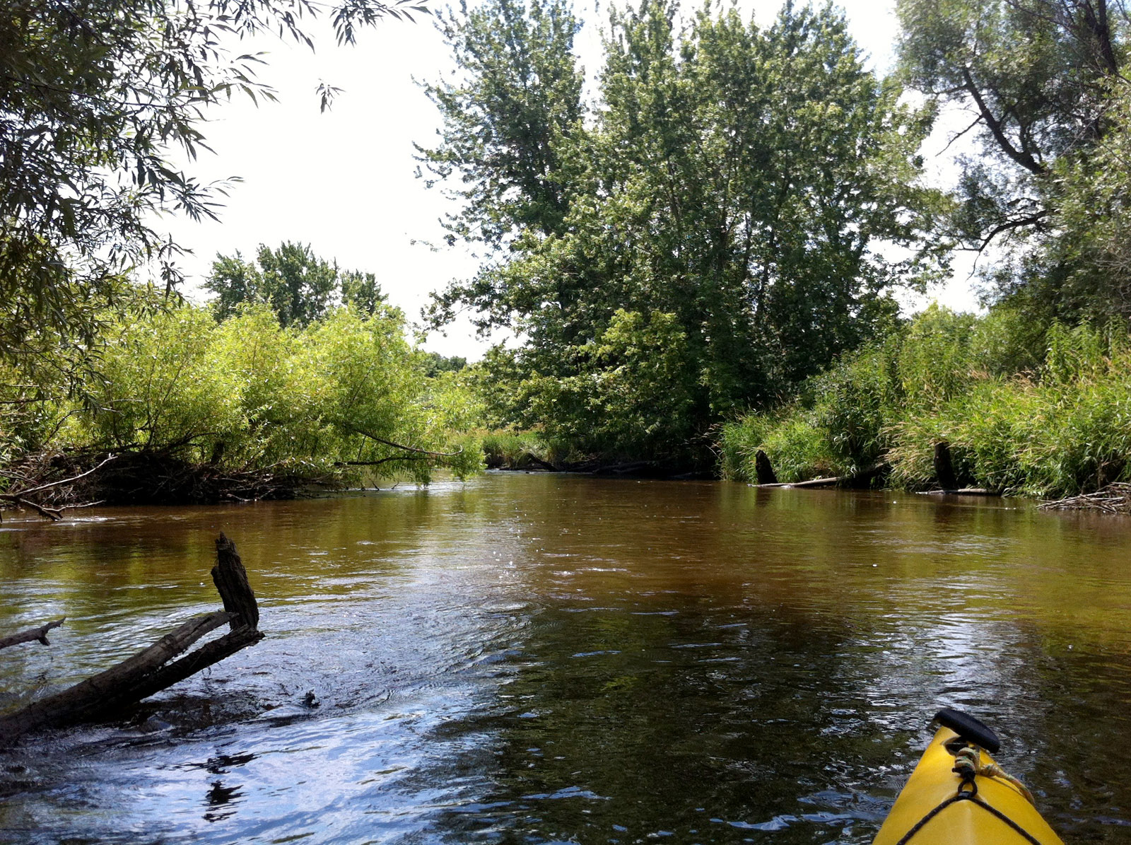 Koshkonong Creek