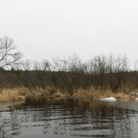 Dell Creek