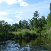 Tomorrow River