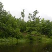 Jump River
