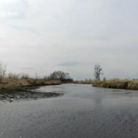 Puchyan River
