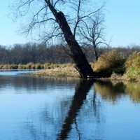 Mukwonago River