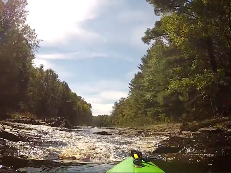 Wedges Creek Video