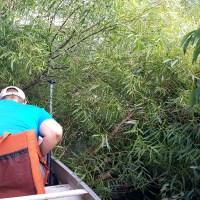 Sugar River West Branch