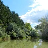 Bark River VI | Miles Paddled