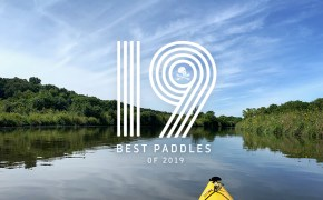 19 Best Paddles of 2019