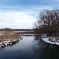 Dorn Creek