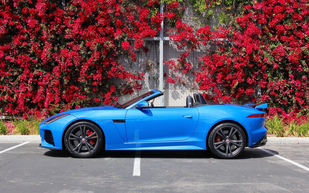 Jaguar's F-Type SVR Convertible Will Immerse Your Consciousness