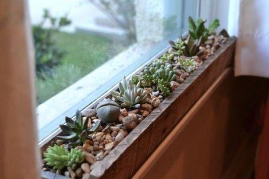 Un alféizar de ventana decorado con suculentas
