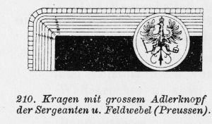 Kragen mit großem Adlerknopf der Sergeanten und Feldwebel (wikipedia.de)