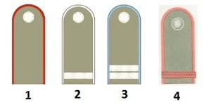 Classifica di squadra del NVA