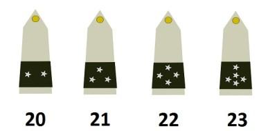 I generali dell'esercito francese