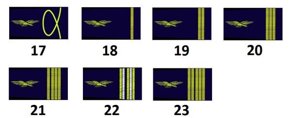 Stabs- und Subalternoffiziere der französischen Luftwaffe (Officiers supérieurs et subalternes)