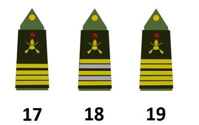 Alti ufficiali dell'esercito francese