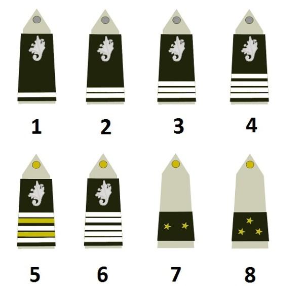 Verwaltungszweig der französischen Landstreitkräfte (Commissariat de l'armée de terre)