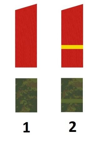 Russische Mannschaftdienstgrade