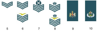 Dienstgrade der englischen Royal Air Force