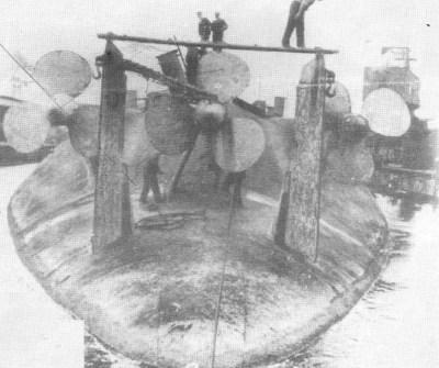 SMS König Albert durante il processo di rottamazione