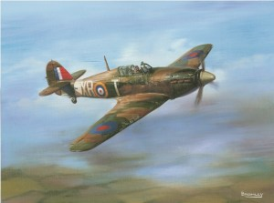 Hurricane - by Mark Bromley