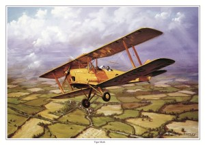 Tigermoth - Military Times - Mark Bromley