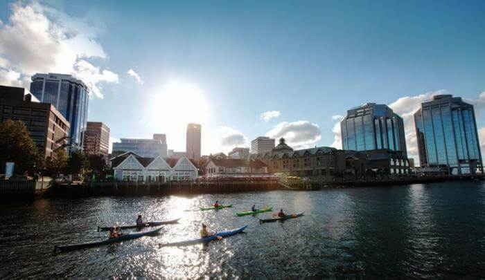 shore excursions Halifax Kayak Tour