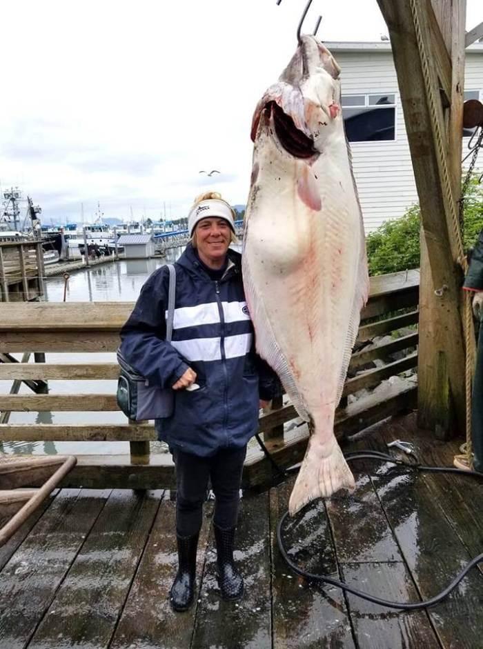 Bigfish15