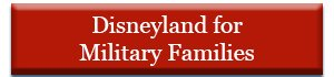 Disneyland for Military Families