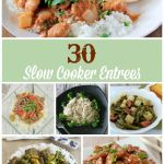 Slow Cooker Entrees