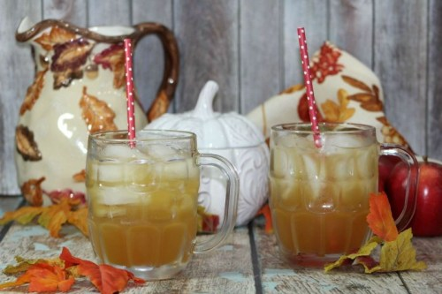 Homemade Apple Cider Ultimate List of Holiday Cocktail & Mocktail Recipes