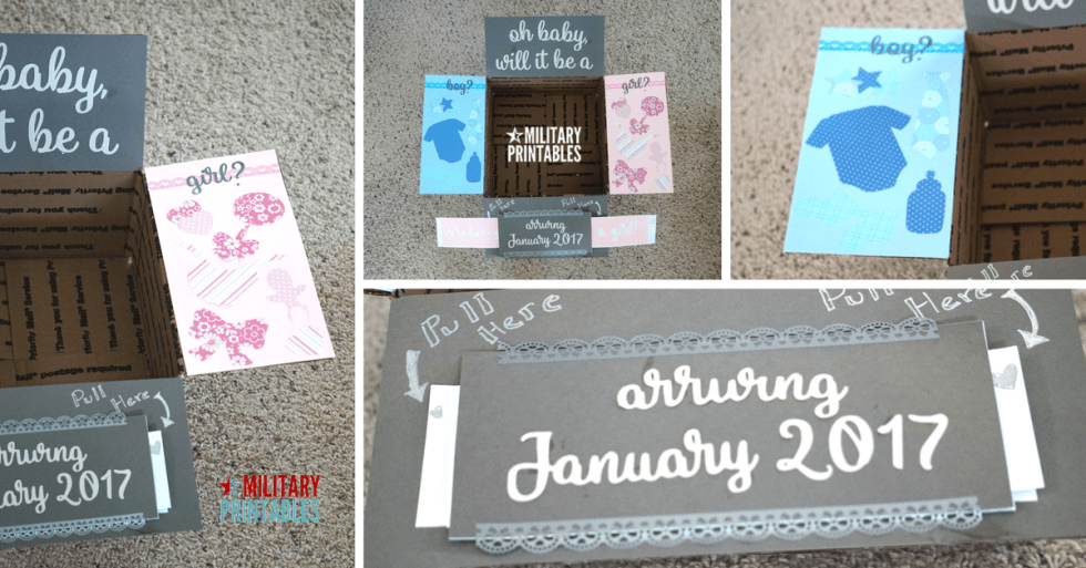 Gender Reveal Slider Care Package
