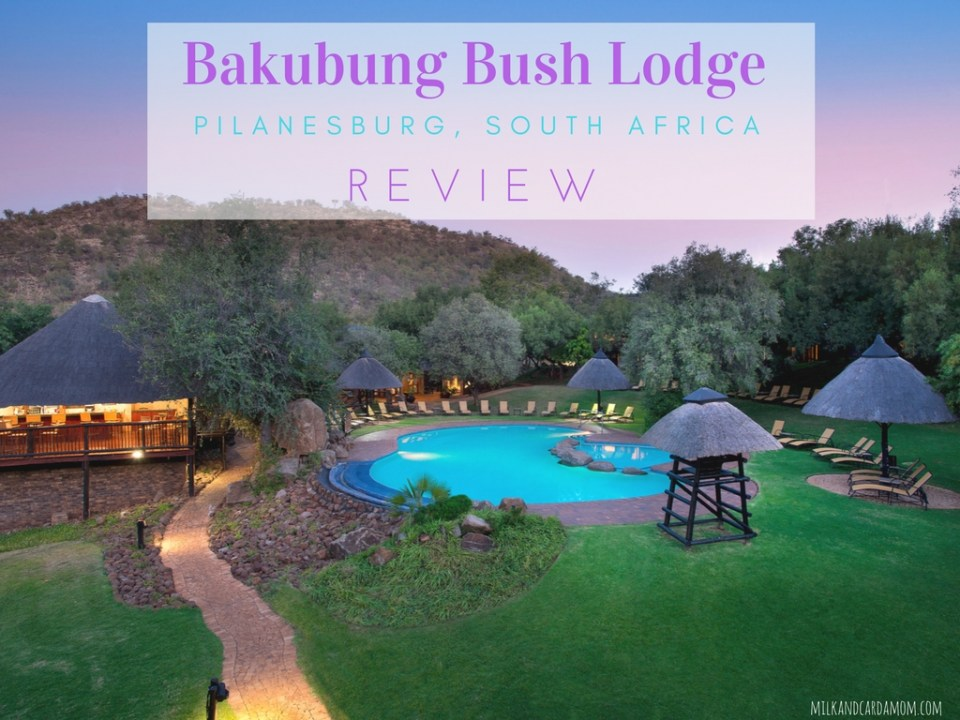 Bakubung Bush Lodge Review