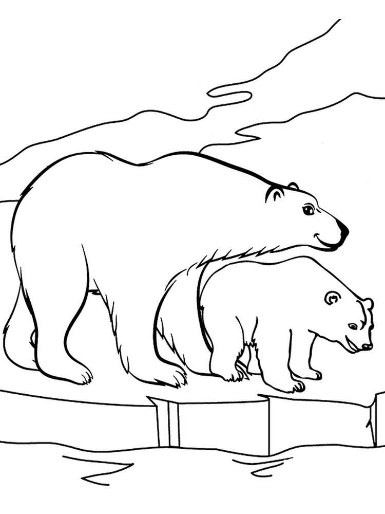 coloring pages polar bear