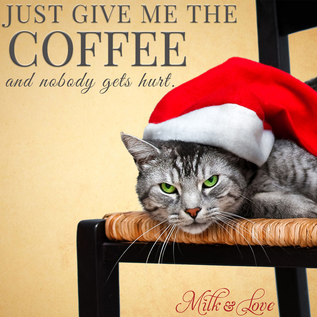 7 Funny Christmas Memes To Make You Laugh Milk And Love