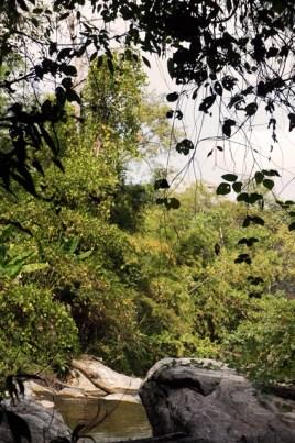 Lan Sang National Park, Tak, Thailand