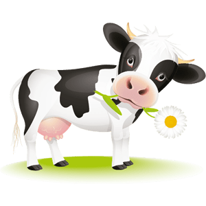 Systems for Cows