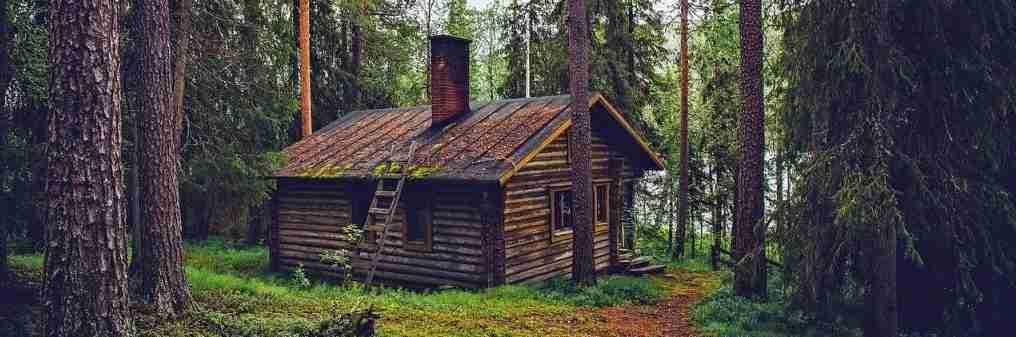 bf1264dd5556d6 Let s Go Exploring! How the Finns Beat Winter - Millennial Revolution