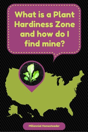 What is a plant hadiness zone, and how do I find mine_