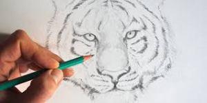 dessin et le bien être