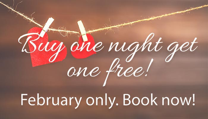 Buy one Get one Free night in February