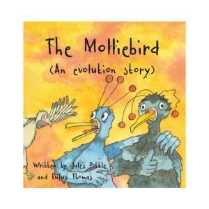 The Molliebird
